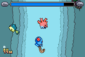 Diving Corsola screen.png