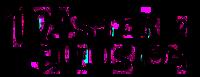 Master of Illusion series logo