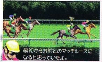 Horse Racing Creating Derby screenshot.png